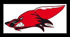 logo_coyotes-denain