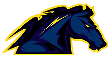 logo_dunkerque_mavericks